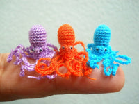 Miniature Octopus