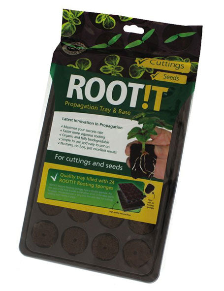 Root!t Rooting Sponge Tray x 24