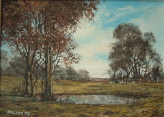 Woodland Scene with Pond