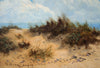 Sand Dunes - The Wallington Gallery