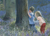 Hide and Seek in Bluebell Wood - The Wallington Gallery