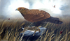 Golden Eagle with Brown Hare - The Wallington Gallery