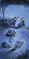 Badgers in Moonlight