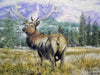 Stag - The Wallington Gallery