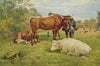Cattle at rest - The Wallington Gallery