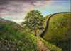 Sycamore Gap - The Wallington Gallery