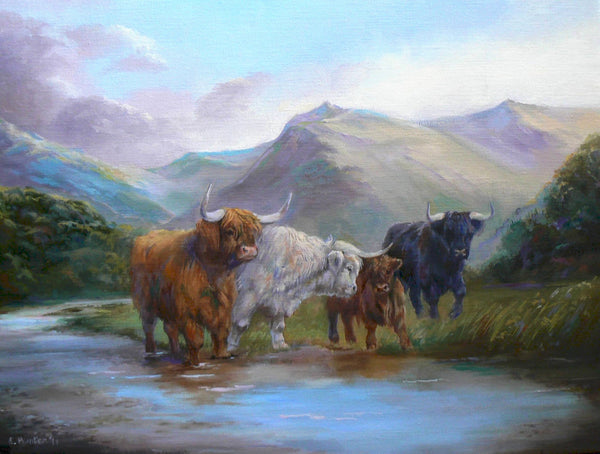 Highland Cattle in Glen Nevis