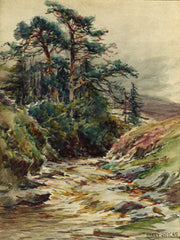 Burnhope Burn in flood, Wearhead
