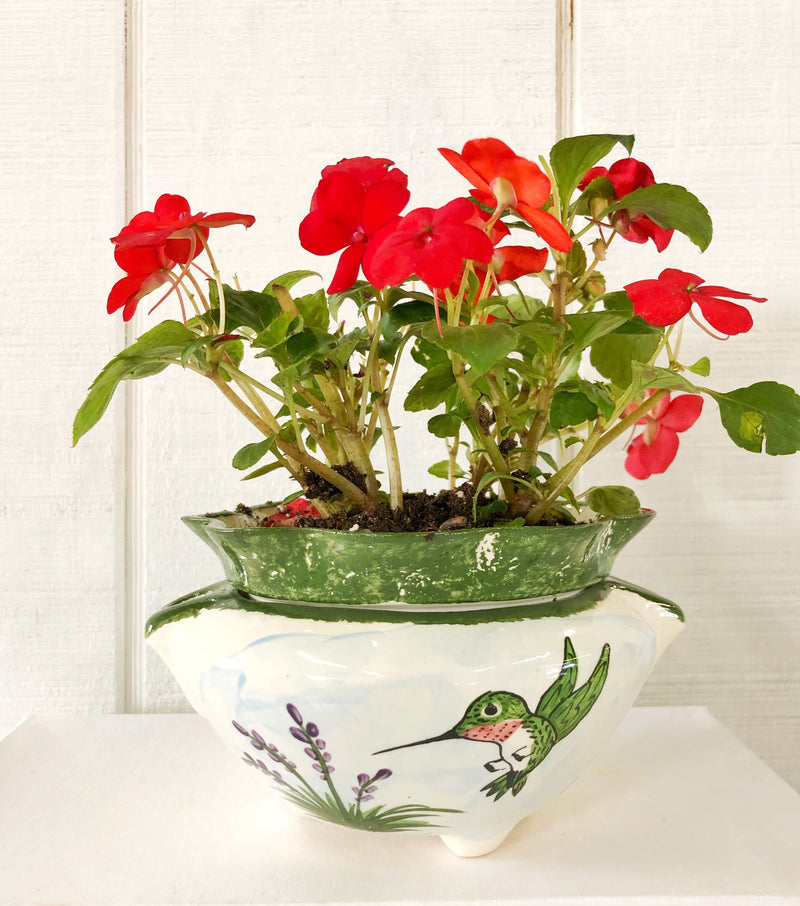 Self Watering Flower Pots - nolawatkins.com