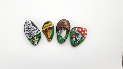 mushrooms stone painting