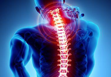The 3 Best Reasons To See A Chiropractor When You Are Not In Pain