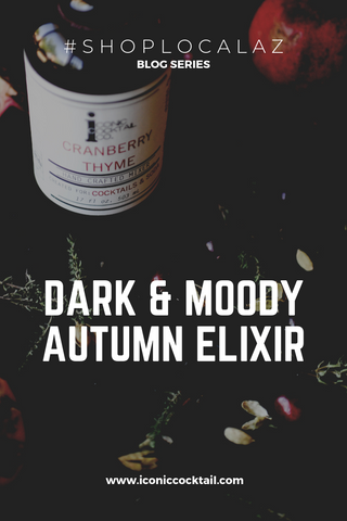 Dark and Moody Autumn Elixir for Fall and Halloween by Iconic Cocktail Co