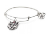alex and ani wild heart charm