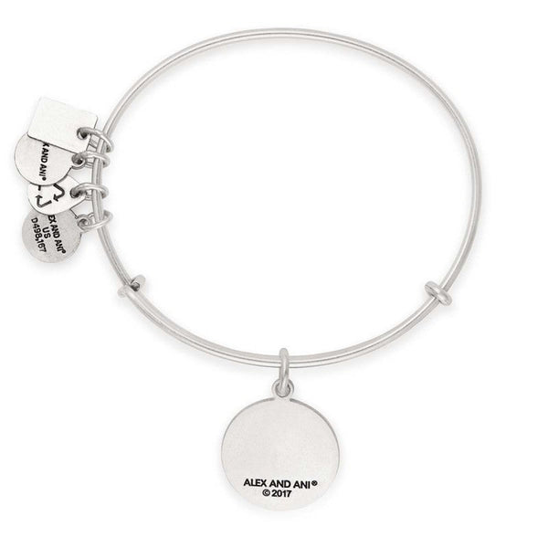 ALEX & ANI TEAM USA SKIING CHARM BRACELET