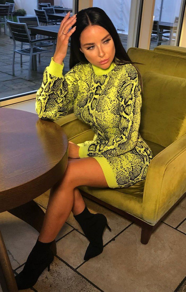 Lime Snake Print High Neck Jumper Dress - Aimee
