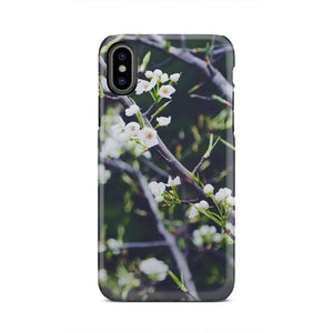 Tree Nature Branch Blossom Plant Leaf iPhone X
