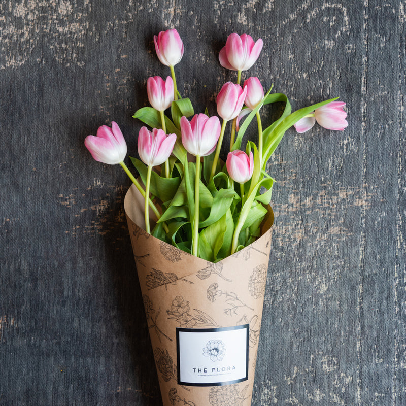 Tulips (Bunch of 10)