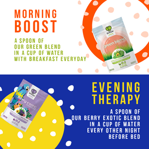SMOOV Detox Superfood program which involves one spoon of green blend everyday with breakfast and one spoon of berry exotic blend every other night before bed.