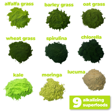 Load image into Gallery viewer, The 9 nutritious and alkalizing ingredients used to make Smoov's green blend- alfalfa grass, barley grass, oat grass, wheat grass, spirulina, chlorella, kale, moringa and lucuma. All to help you detox and get more nutrients.