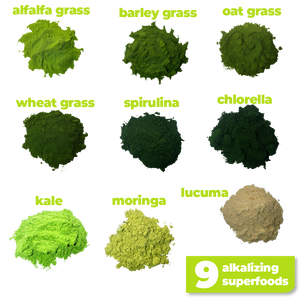 The 9 nutritious and alkalizing ingredients used to make Smoov's green blend- alfalfa grass, barley grass, oat grass, wheat grass, spirulina, chlorella, kale, moringa and lucuma. All to help you detox and get more nutrients.