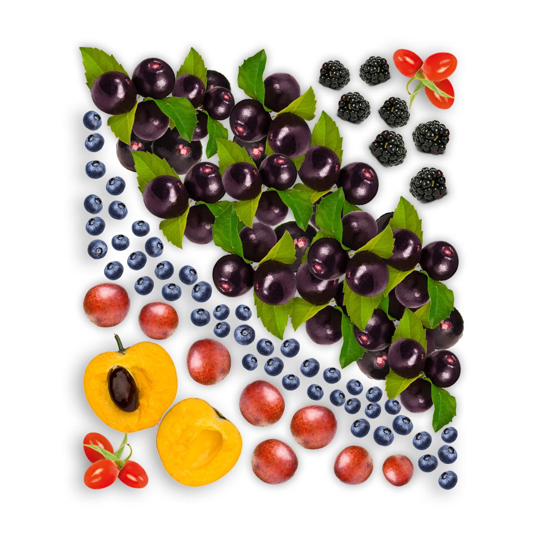 The ingredients for Smoov's berry exotic blend laid out to form a rectangle.