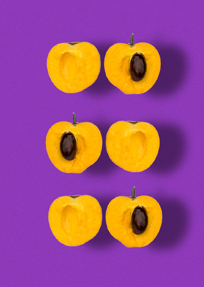 Smoov Depiction of Lucuma fruit floating on purple background