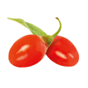 A pair of bright red goji berries. One of the ingredients used in Smoov's golden blend.