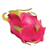 Bright hot pink dragonfruit with bright green tips. One of the ingredients used in Smoov's blush blend.