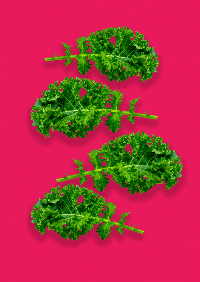 4 bright green kale leaves floating on a bright pink Smoov surface