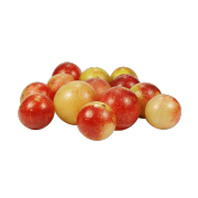 Group of fresh ripe red and yellow camu camu berries. One of the ingredients used in Smoov's berry exotic blend.