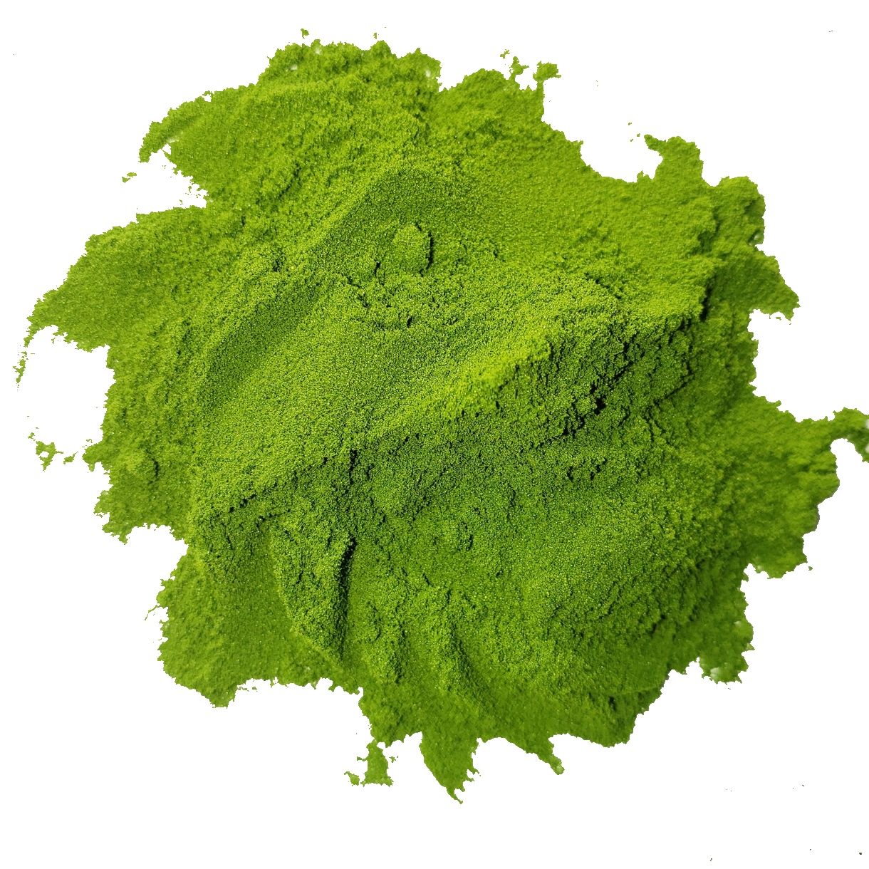 Circle of bright vibrant forest green alfalfa grass juice powder from Smoov Blends. Made from freshly juiced alfalfa grass.