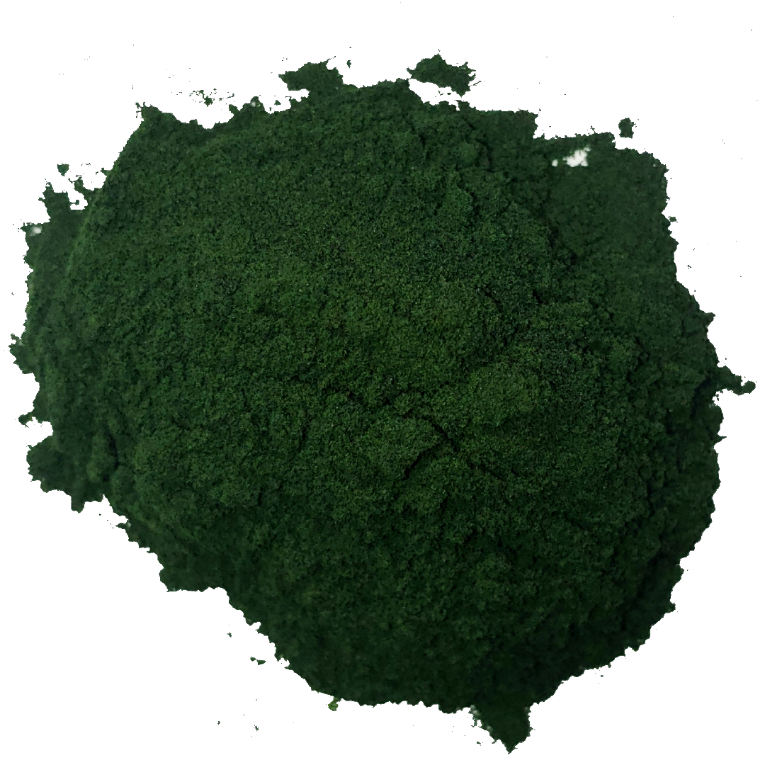 A pile of dark green spirulina powder. It is one of the ingredients used in the green blend by Smoov