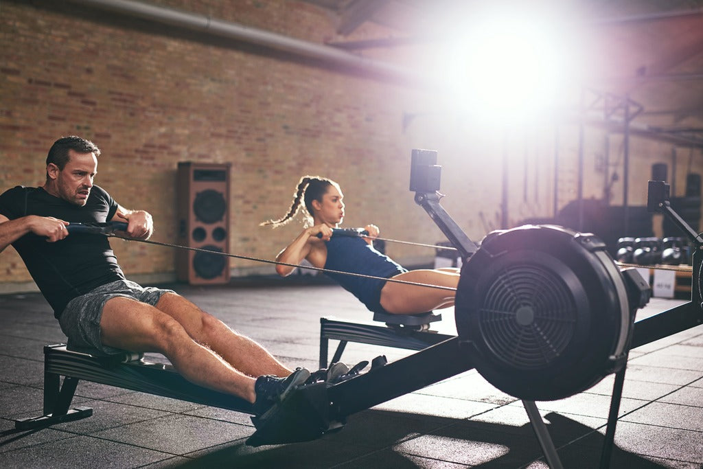 Main Muscle Groups Used in a Rowing Machine Workout