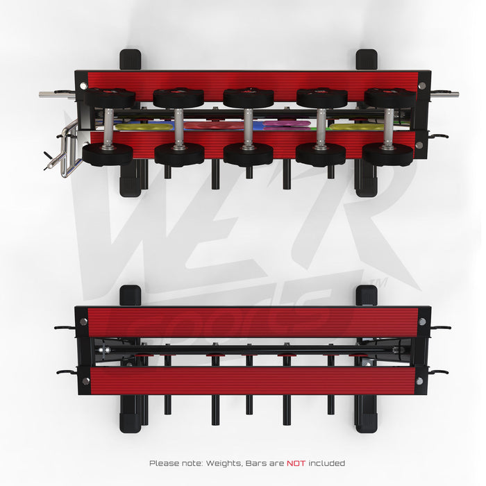 Top view of dumbbell and plate storage rack