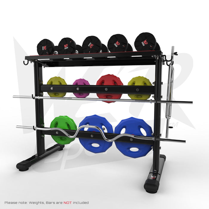 Dumbbell and weight plate storage rack with weights