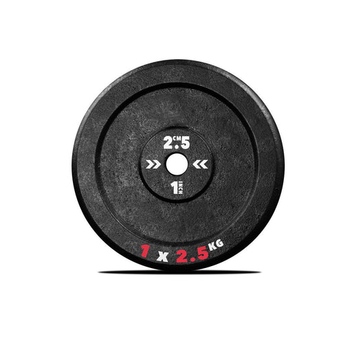 1 2.5kg Cast iron weight plate