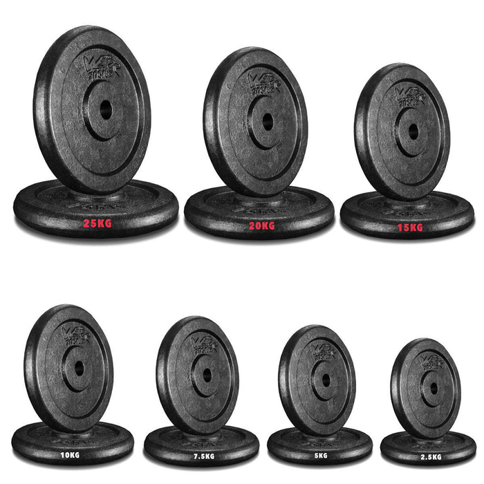 "1"" CastXPlate Cast Iron Weight Plate from WeRSports 19"