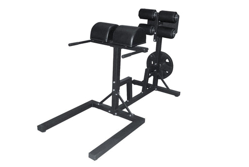 Glute Ham Developer Raise Machine GHD Back Extension Core Gym Strength Training