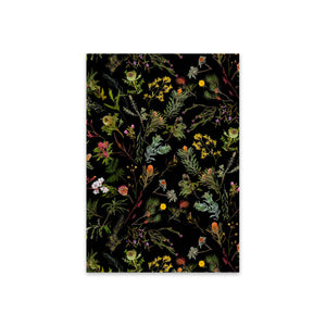 Greeting Card Fallen Fruit Native Plants Black