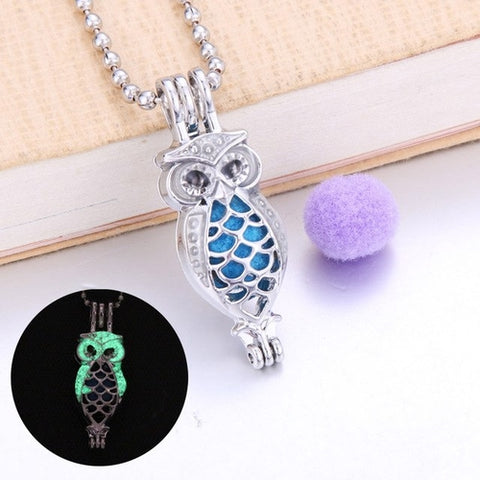 Image of Wise Owl Essential Oil Diffuser Necklace