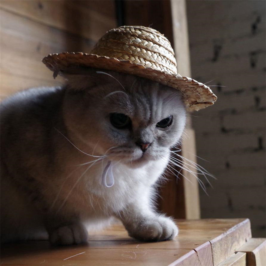 Pet Accessories For Dog For Cat 1pc Dog Cat Straw Sombrero Hat Pet
