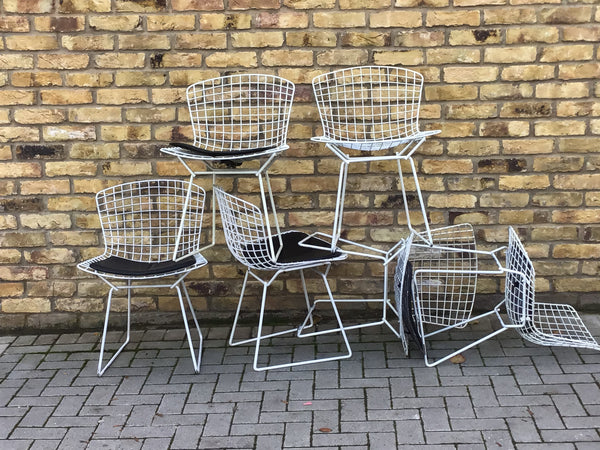 Harry Bertoia Chairs