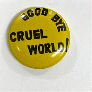 Goodbye Cruel World! Pin