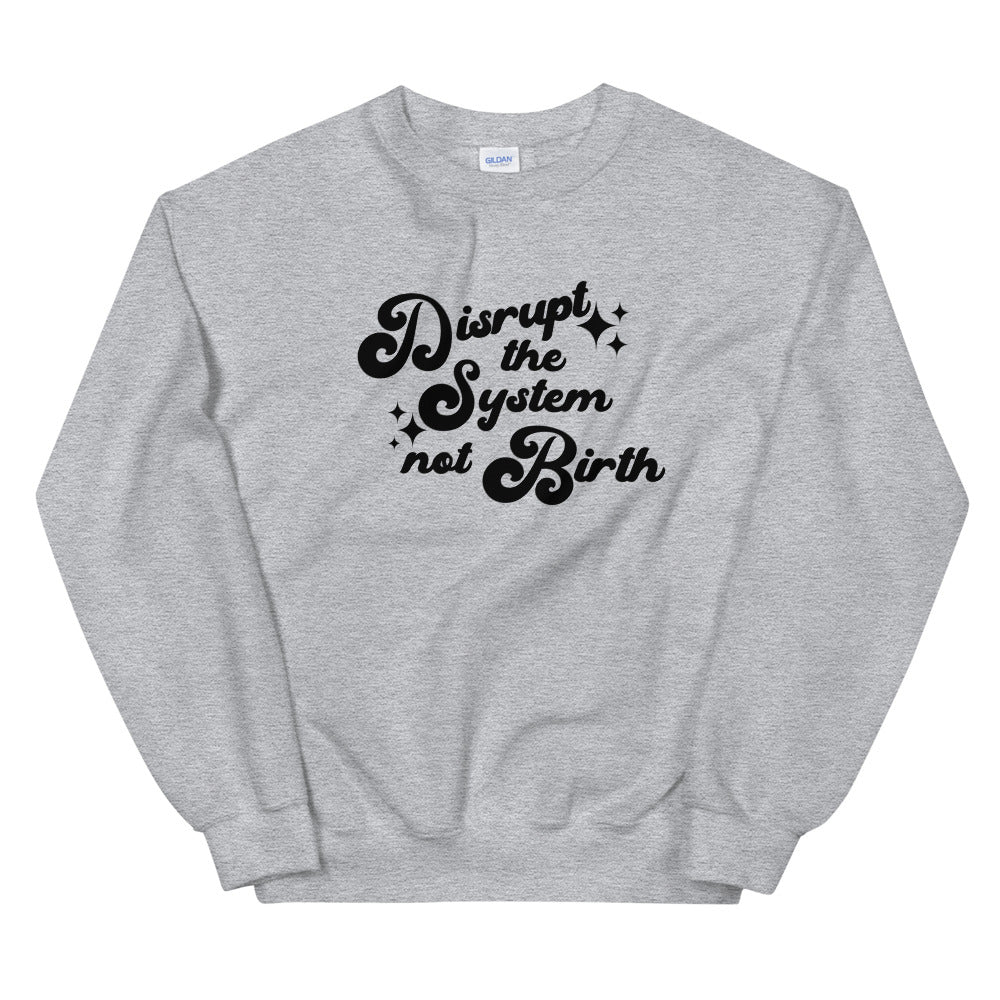 Disrupt The System Not Birth crewneck sweater