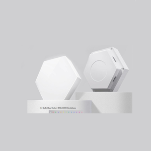 Hex Touch Light Modular RGB Color Wall Lamp