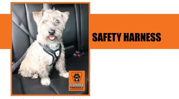 Canine Friendly Crash Tested Car Harness - Discontinued - Xtra Dog