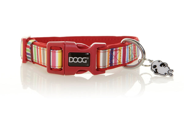 DOOG Scooby Dog Collar Candy Stripe - Discontinued - Xtra Dog