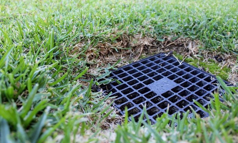 What You Need to Know About Catch Basins