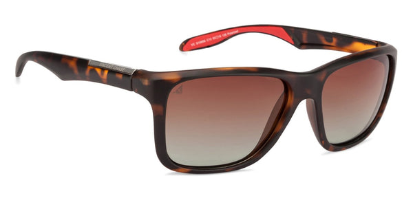 Vincent Chase Polarized Power Tortoise Sunglasses 125468