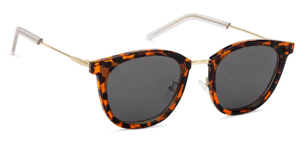 Vincent Chase Tortoise Sunglasses 130883
